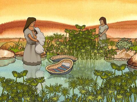 Yokhebed Terpaksa Menghanyutkan Putranya, Musa ke Sungai Nil