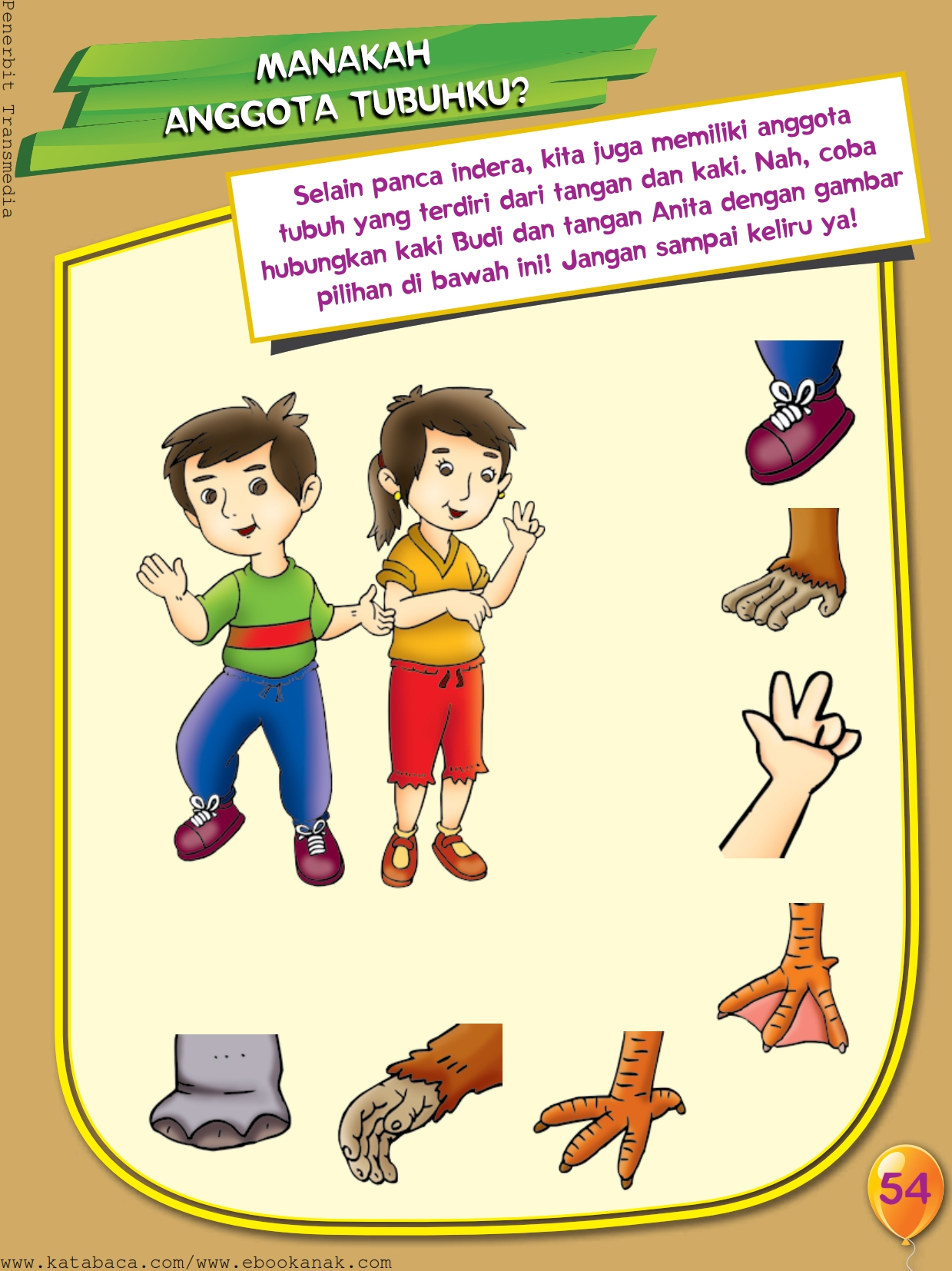Mengenal Panca Indera Tangan Dan Kaki