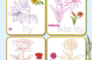 baca buku online, buku aktivitas anak jenius TK A B_063 mewarnai jenis-jenis bunga