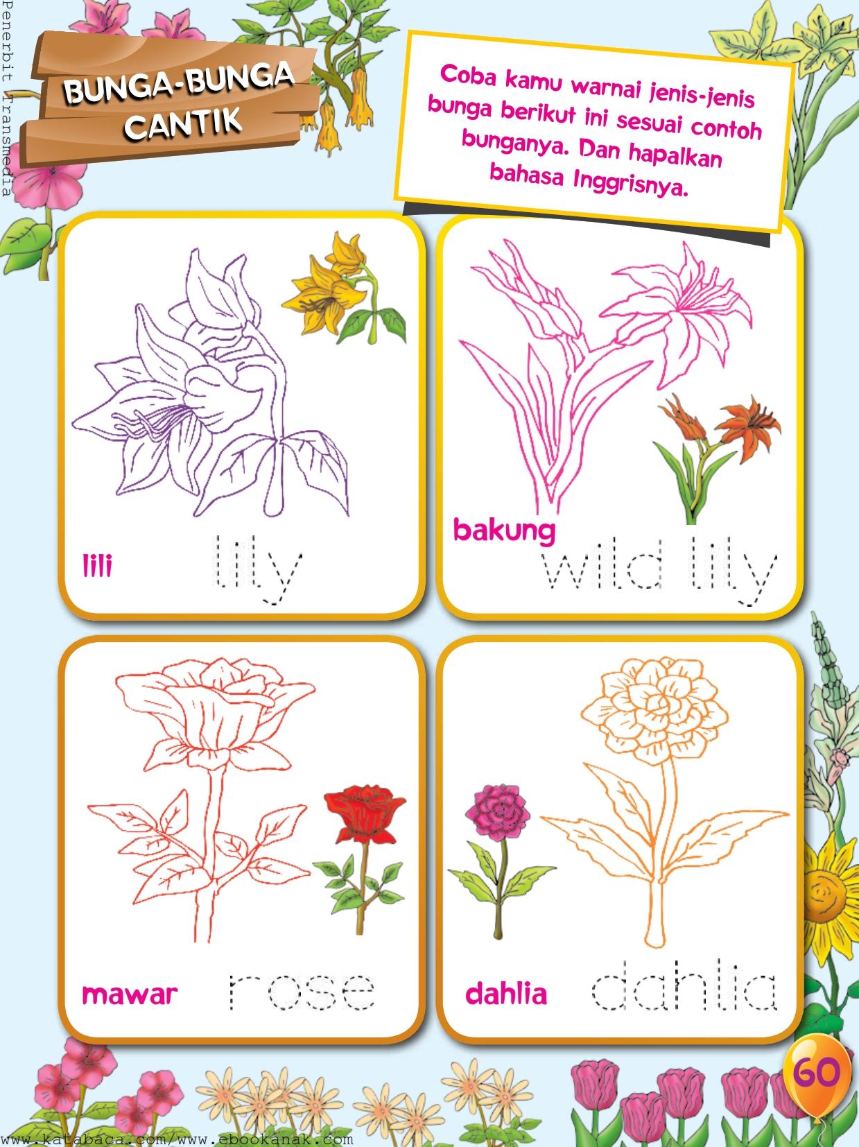 Mewarnai Jenis Jenis Bunga