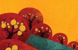 biji semangka ajaib (5)
