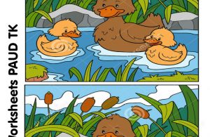 menemukan perbedaan 12 gambar bebek
